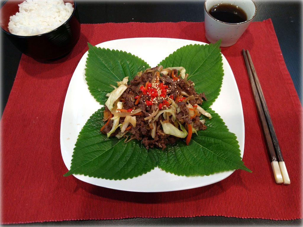 Bulgogi (불고기) - Korean Marinated Ribeye Beef
